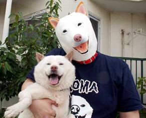 Petkeeper_c160302.jpg