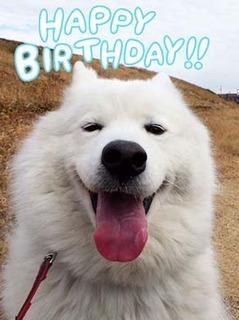 birthday_190114.jpg