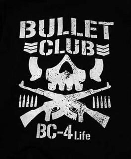 bullet1811062.jpg