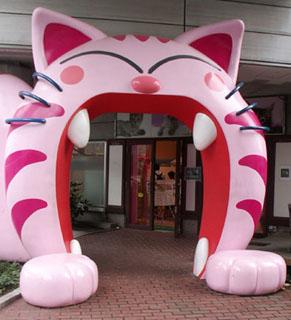 cat1006201.jpg