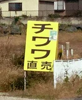 chiwawa1510232.jpg