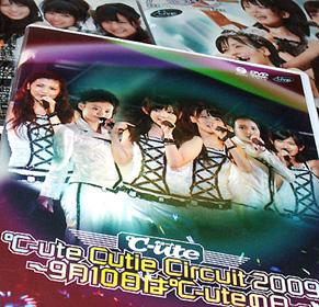 cutenohi091207.jpg