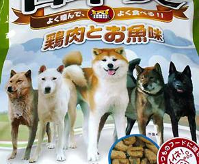 dog_f1405021.jpg