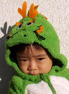 dragonboy111216.jpg