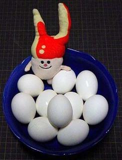egg190203.jpg