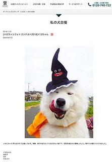 helloween190113.jpg