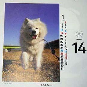 himekuri1910171.jpg