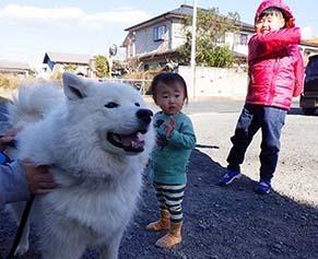 hirase_1712302.jpg