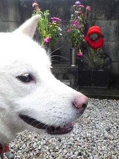 kinjo_g210813a.jpg