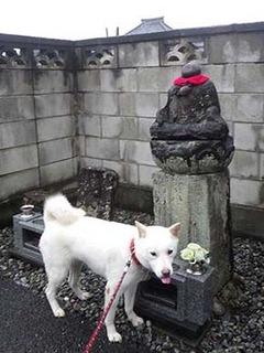 kinjo_g2109021.jpg