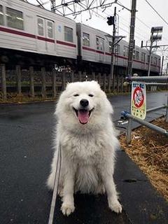 kinjo_i1902282.jpg