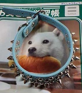kubiwa_2011051.jpg