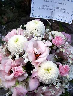 kumaji_flower131204.jpg