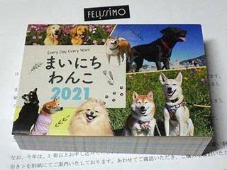 mainichi201008.jpg