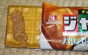 miso_mona190731.jpg