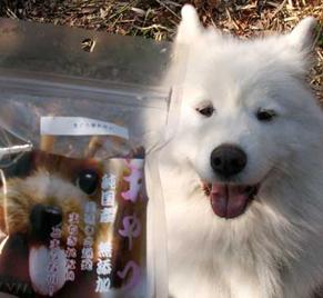 nike_sankasho130221.jpg