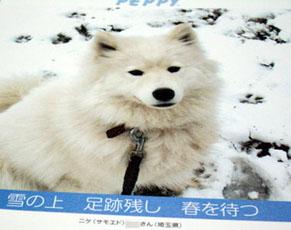 nike_senryu100918.jpg