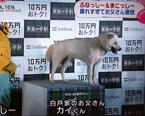 nisekai140205.jpg
