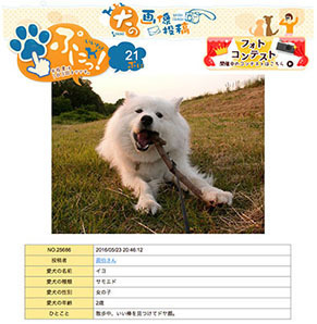 ohyama_iyo160906.jpg
