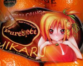 orange120507.jpg