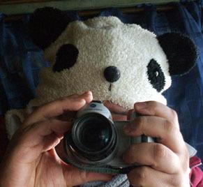 panda110220.jpg