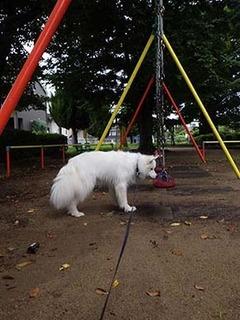 park_i1808122.jpg
