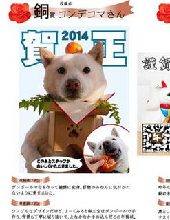 petdaisuki140228.jpg
