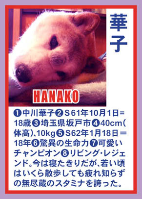profile_hanako0509.jpg