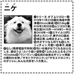 profile_nike0509.jpg