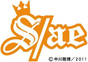 sae_smileage110412.jpg