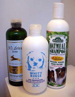 shampoo160214.jpg