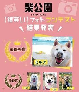 shibakouen1908312.jpg