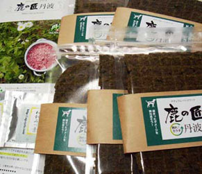 shikatakumi160420.jpg