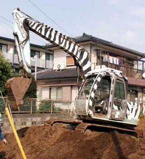 shimauma1206253.jpg