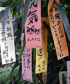tanabata__170707.jpg