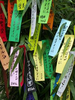 tanzaku110707.jpg