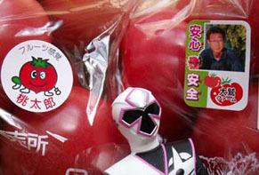 tomatto1604252.jpg
