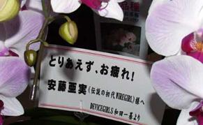 wadaflower120609.jpg