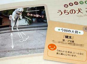wan_1601101.jpg