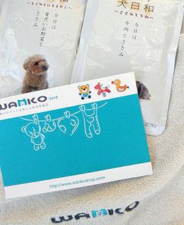 wanko_pre161230.jpg