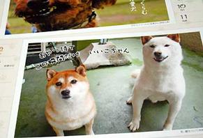 wws_ayaken131102.jpg