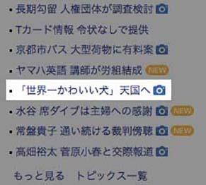 yahoo190120.jpg