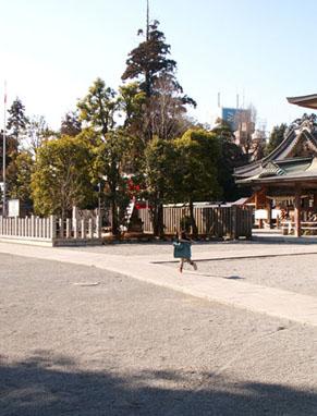 yakyu_1001303.jpg